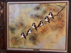 """""""Snowbirds"""""""