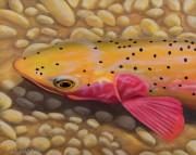 """Strawberry Cutty I"" Giclee on Canvas by AD Maddox"