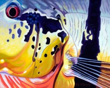 """""""El Sargento"""" a Limited edition fly fishing Giclee on Canvas by A D Maddox"""