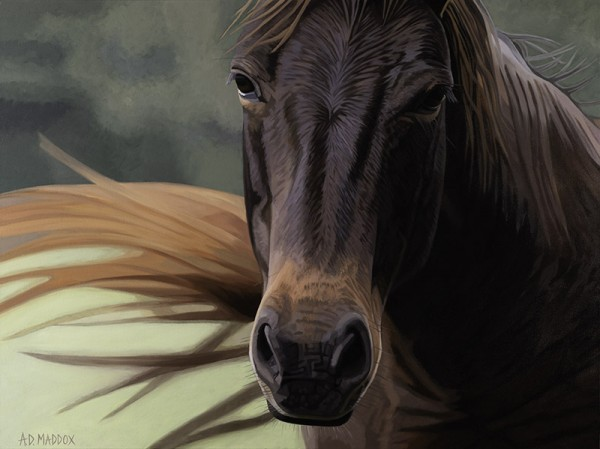 """""""Mustang Series 4"""" Giclee on Canvas by AD Maddox"""