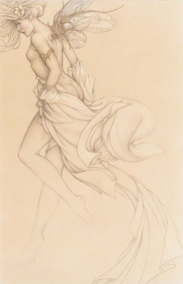 """""""Startled Sky Nymph"""" Drawing Edtion on Paper by Michael Parkes"""