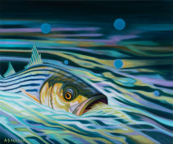 """Striper Rise"" Giclee on canvas by AD Maddos"