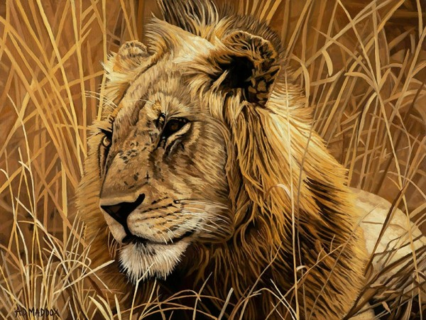 """""""Lion Series I"""" Giclee on Canvas by AD Maddox"""