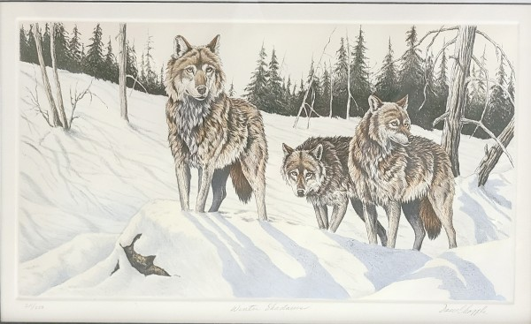 """""""Winter Shadows"""" Etching by David Chapple"""