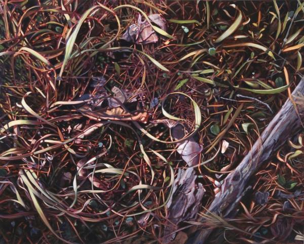 """Forest Floor"" Giclee on Paper by Adrian Deckbar"
