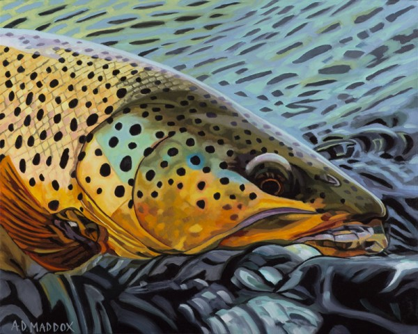 """""""Henry's Fork Brown"""" Fishing Giclee on Canvas by A D Maddox"""